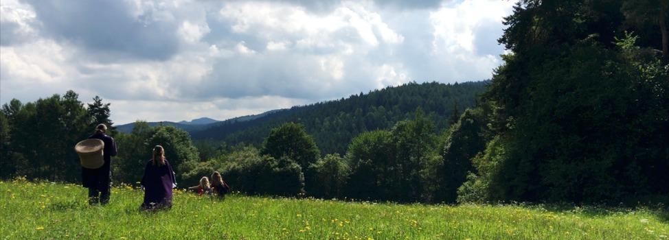 Onderweg in de heuvels